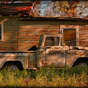 Put Out to Pasture by Larry Landry - Transportation Automobiles ( chevy pickup, 50's, #55 chevy pickup, out to pasture, #old pickups )