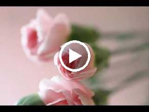 Video: A. Vivaldi  Concerto for violin, strings   b.c. in C major (RV 171) - Europa Galante -
