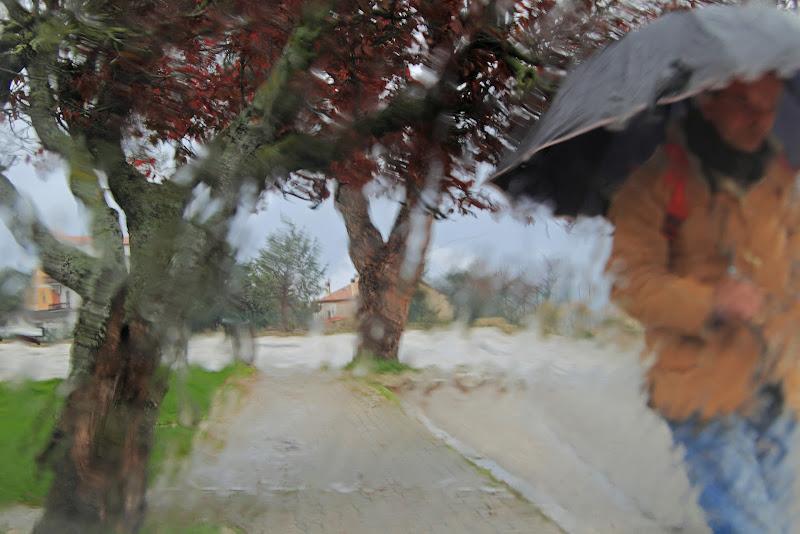 pioggia d'autunno di rino_savastano