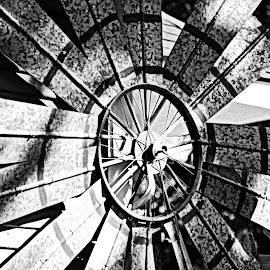 Windmill by Brenda Shoemake - Black & White Abstract