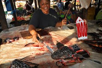 Photo: lungfish...was still biting to the machete
