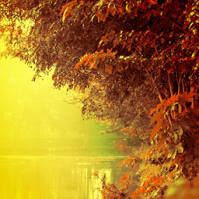 by Zaidan Fikri - Backgrounds Nature