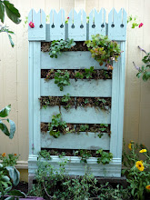 """Photo: Vertical strawberry planters with nasturiums planted in top. This is a fancier version of a """"pallet garden""""--I've just added trim to dress it up, and some bits of Victorian gingerbread on top from an antiques salvage place."""