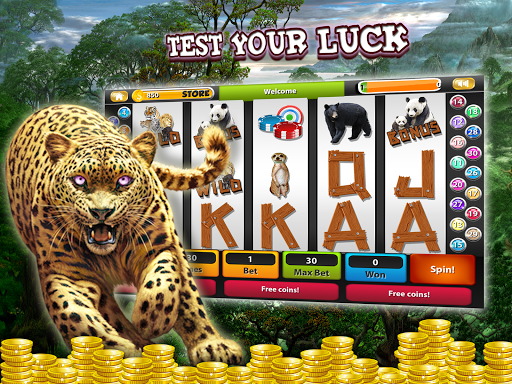 Wild Luck Slot Machine Casino