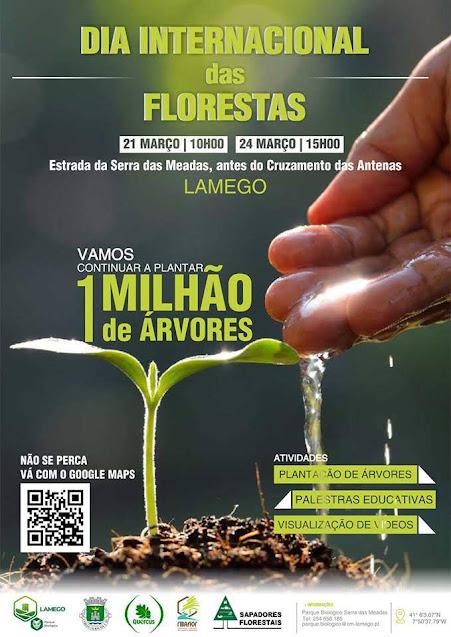 Venha celebrar connosco o Dia da Floresta