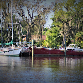 MOORED by Patti Westberry - Transportation Boats ( sail boat, river, river boat, two, boat )