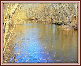 Photo: 333 Tuesday March 1, 2011 Saddle River - Saddle Brook Park