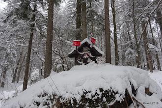 Photo: Plan je bil malo drugačen, na novo zapadli sneg nam je malo zamešal štrene, a če ne drugam, do Kališča bomo že prišli