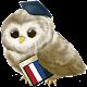 Apprendre le néerlandais icon