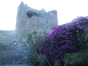 Photo: Pretty foliage, Aci Castello castle