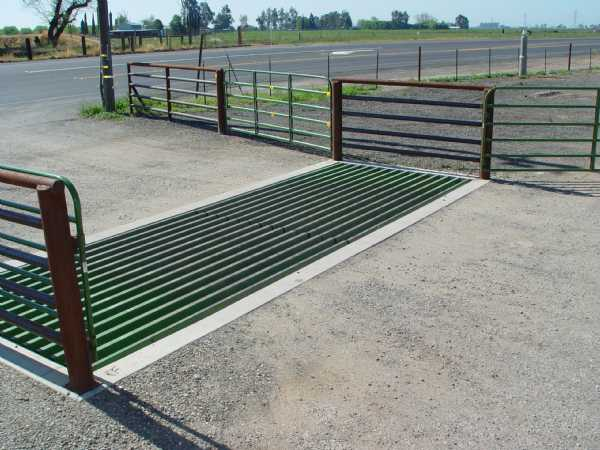 cattle guard installed in a road