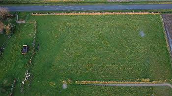 terrain à Nieul-le-Virouil (17)