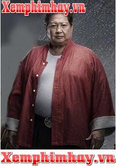 Phim Hành Động 2019 - Tinh Hoa Quyền Thuật-Hồng Kim Bảo-Phim Hành Động Võ Thuật Thuyết Minh full HD -  ()