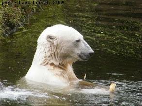 Photo: Spass im Wasser :-)