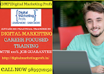 Digital Marketing Institute In Rohini
