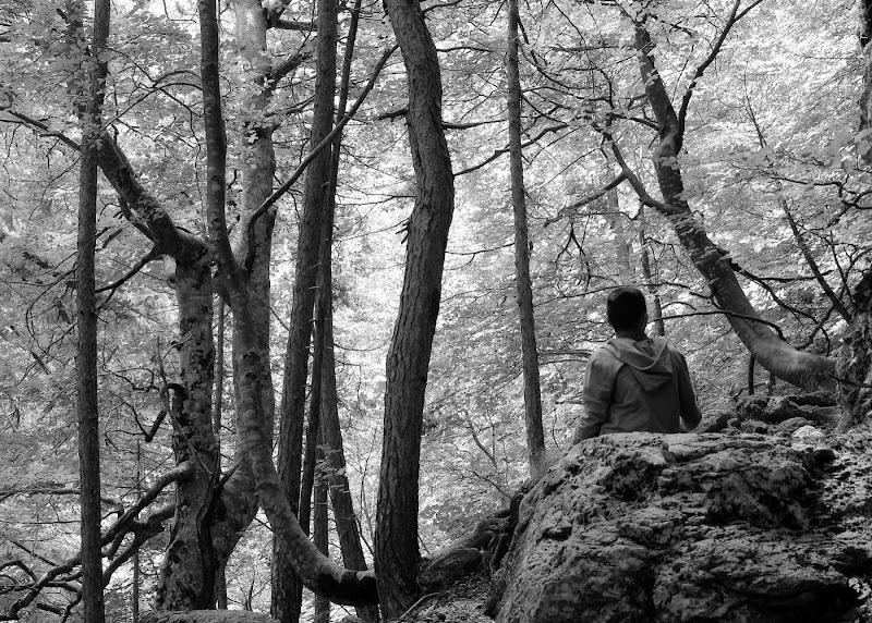 Naturale Tranquillità di Francesca Zaia