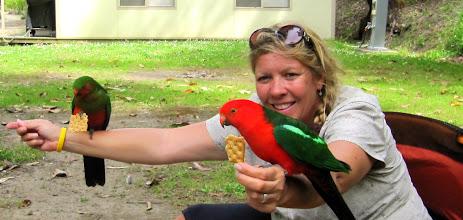 Photo: Year 2 Day 147 - Feeding the Parrots