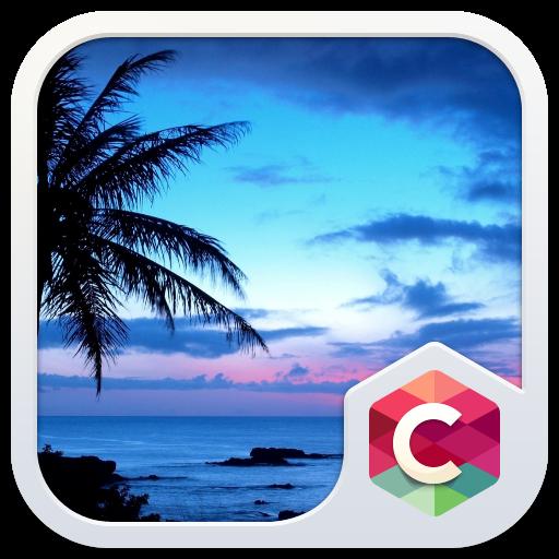Palm Tree Sunset CLauncher The 個人化 App LOGO-APP開箱王