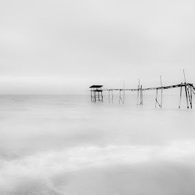 The Last 2012 by Reeve Lim - Landscapes Waterscapes