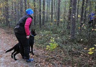 Photo: Cali får leke og kose seg med diverse figuranter i skogen.