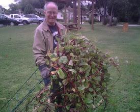 "Photo: Pat removing the ""Malabar Medusa"""