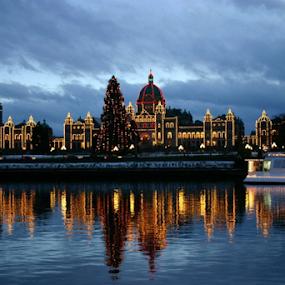 Vancouver Island, BC, Canada by Reinilda Sissons - City,  Street & Park  Skylines