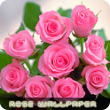 Roses flower Wallpapers V2 icon