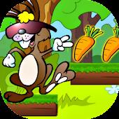 Bunny Jungle Run