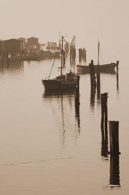 Delta del Po di photographart