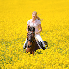 by Runa Nightsongwoods - People Street & Candids ( field, rider, blonde, horses, woman, summer, holidays, yellow, fun, flowers )