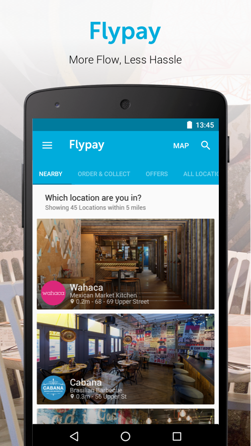flypay- screenshot