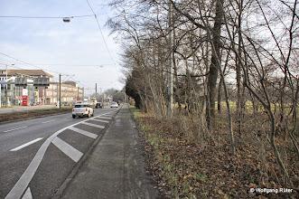 Photo: Hier im Grünstreifen als Barriere zwischen Pragstraße B 10 und FFH Rosensteinpark sind u.a. häufig Feldhasen anzutreffen