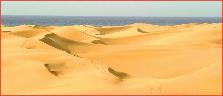 Deserto di dicorsa