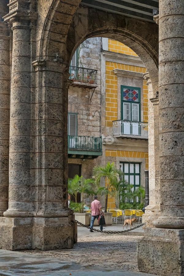 Arches in Cuba by Gwen Paton - Buildings & Architecture Architectural Detail ( arch, buildng, architecture, havana, cuba,  )