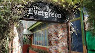 The Evergreen Cafe photo 3