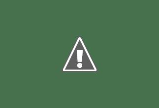Photo: Mar 1969. Picada Buco-Zau / Chimbete.- Cabinda - Angola