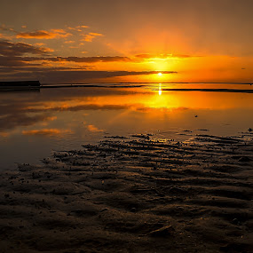 Golden Reflection by Keith Walmsley - Landscapes Sunsets & Sunrises ( water, clouds, orange, sunset, yellow, beach, landscape )