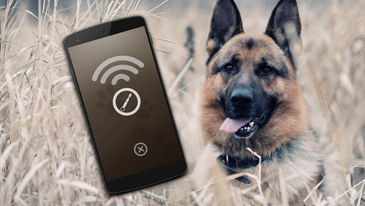 Download Dog Whistle for free, Latest 1 version APK File
