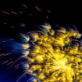 Sparkles by Dennis Mai - Abstract Fire & Fireworks