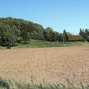 デミオ DE5FS スポルト 2008年式のカスタム事例画像 やま(DE連合 理事長)さんの2020年09月18日07:09の投稿