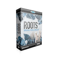 Toontrack SDX Roots | Brushes, Rods & Mallets