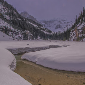Snowy Shores by Ramsey Samara - Landscapes Mountains & Hills ( river, lake louise, mt. victoria, alberta, meadow )
