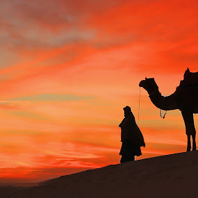 by Sudhir Nambiar - Landscapes Sunsets & Sunrises ( , #GARYFONGDRAMATICLIGHT, #WTFBOBDAVIS )
