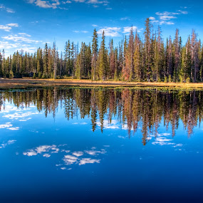Reflections by Brent Flamm - Landscapes Waterscapes ( spots, reflection, mountain, dry, green, forest, lake, travel, rural, country, backcountry, tranquil, uinta, utah, blue, peace, summer, fishing, pine )