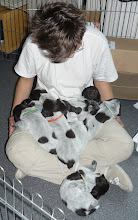 Photo: Met z'n allen op schoot (3 weken oud)