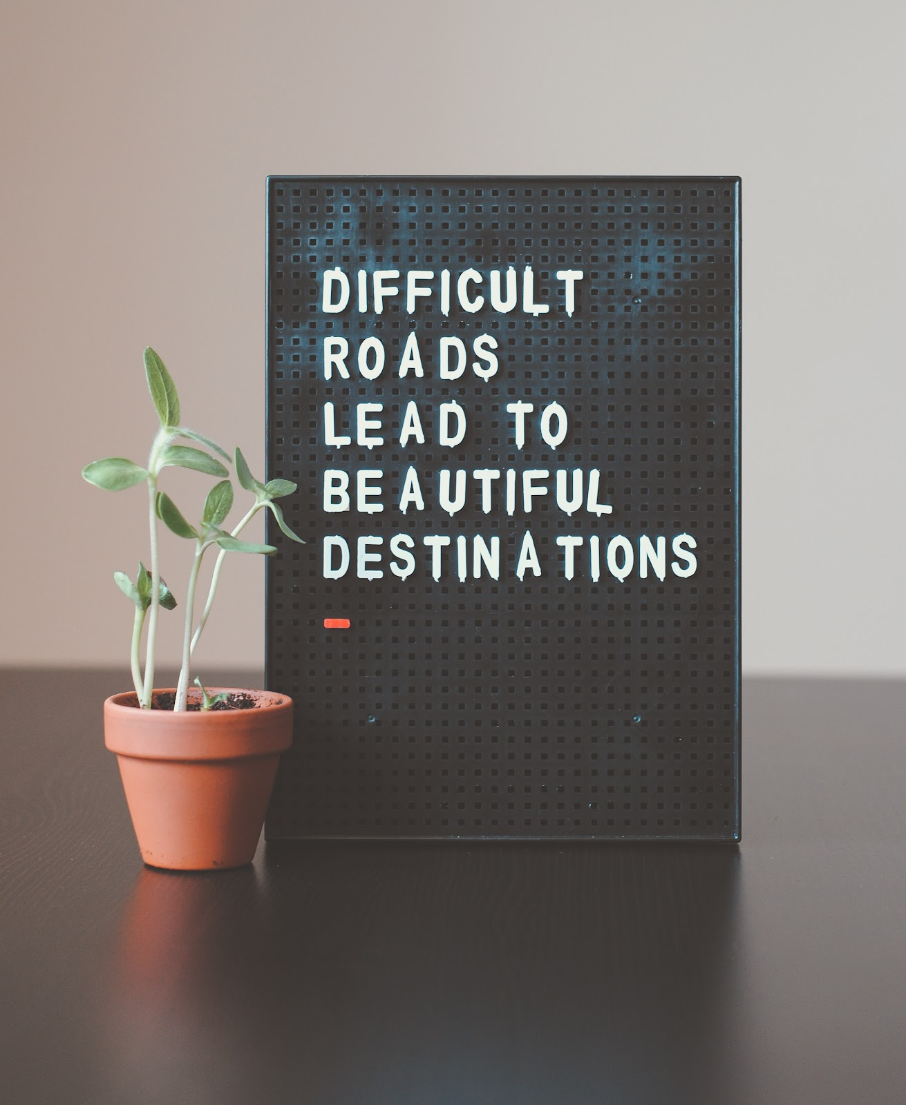 115+ Vision board quotes that will inspire you