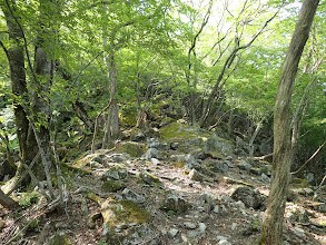山頂直下の大岩のガレ場