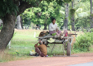 Photo: Year 2 Day 38 -  Having a Rest in the Shade on the Roadside