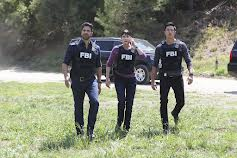 Criminal Minds (S9E17)