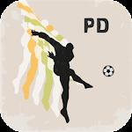 Spanish Primera Division Icon
